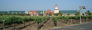 Tour Temecula Wineries With The Palomar Hotel's Special Packages